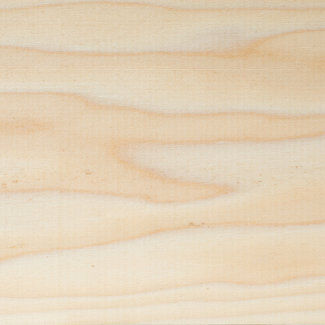 Buy North American Tulipwood/Poplar Timber